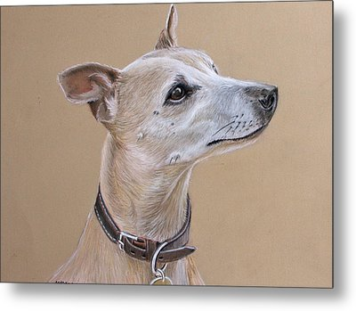 Niamh The Whippet Metal Print by Mary Mayes