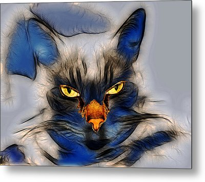 Nice Pussy Cat Metal Print by Irma BACKELANT GALLERIES