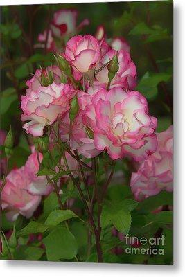 Nicole Roses Metal Print