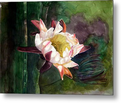 Night Blooming Cereus Metal Print by Sharon Mick