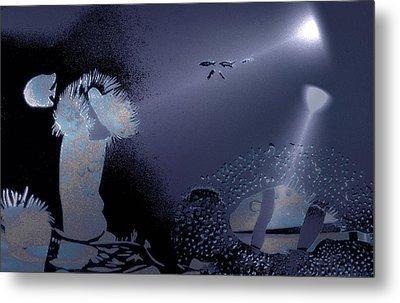 Night Dive Metal Print by Mushtaq Bhat