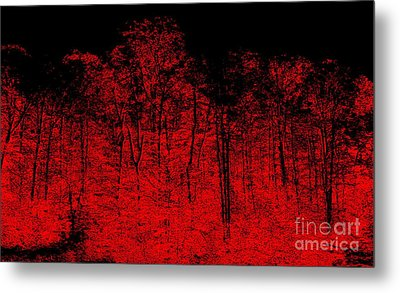 Night Fire Metal Print by Greg Moores