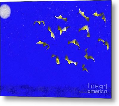 Night Flight Metal Print by Kathie Chicoine