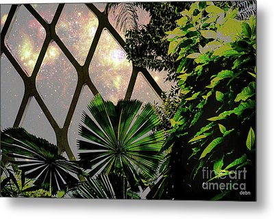 Night In The Arboretum Metal Print