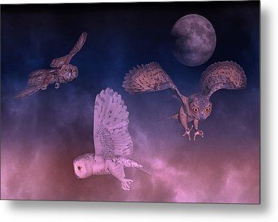 Night Owls Metal Print by Betsy Knapp