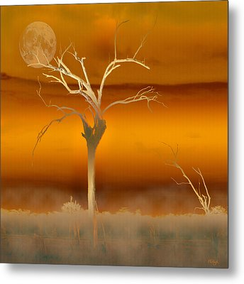 Night Shades Metal Print by Holly Kempe