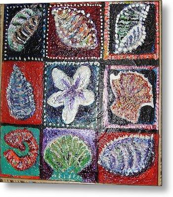 Nine Pretty Shells No Frame Metal Print by Anne-Elizabeth Whiteway