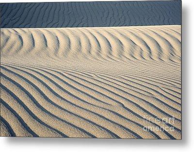 Nipomo Dunes Metal Print by Ronald Hoggard