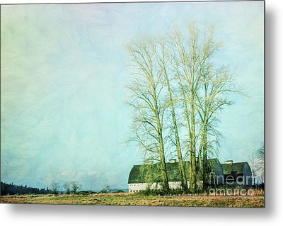 Metal Print featuring the photograph Nisqually Barns by Jean OKeeffe Macro Abundance Art