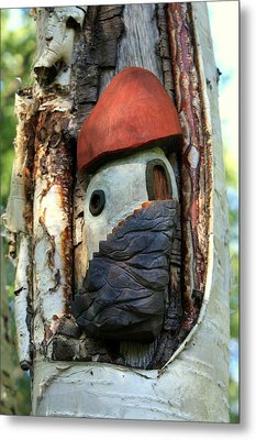 No Place Like Gnome Home Iv Metal Print by Eric Knowlton