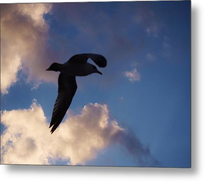 No Sky Is Heavy If The Heart Be Light. Metal Print