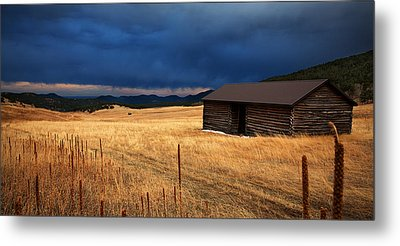 Noble Meadow Metal Print by Thomas Zimmerman