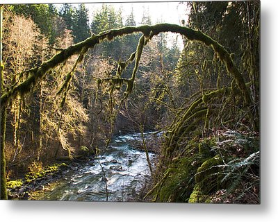Metal Print featuring the photograph Nooksack River by Yulia Kazansky