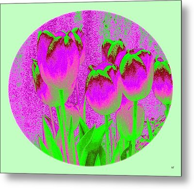 Noric House Tulips Metal Print by Will Borden