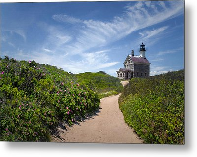 North Light Metal Print by Robin-Lee Vieira