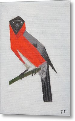 Northern Bullfinch Metal Print by Tamara Savchenko