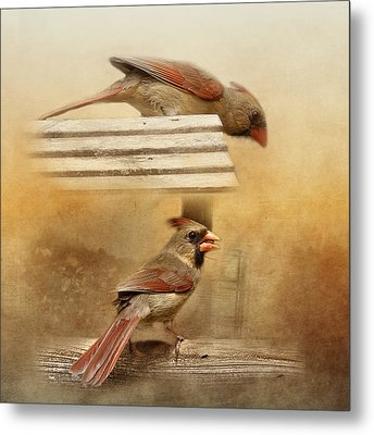 Northern Cardinals At Sunrise Metal Print