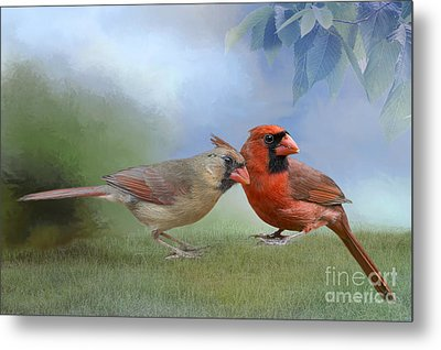 Metal Print featuring the photograph Northern Cardinals On A Spring Day by Bonnie Barry