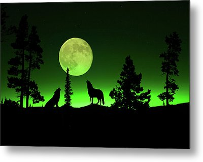 Northern Lights Metal Print by Shane Bechler
