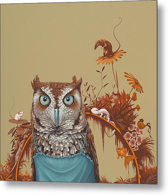Northern Screech Owl Metal Print