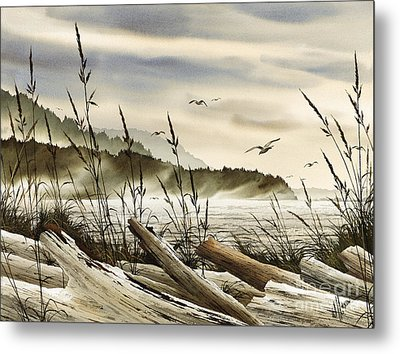 Northwest Shore Metal Print by James Williamson