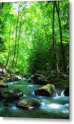 Northwood Brook Metal Print