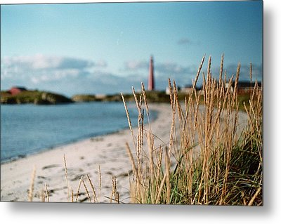 Norwegian Grass Metal Print by Gregory Barger