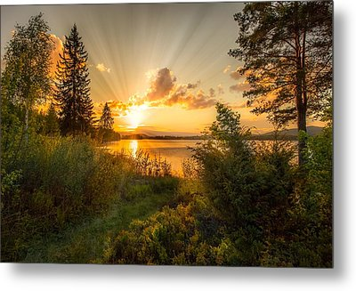 Norwegian Landscape Metal Print by Rose-Maries Pictures