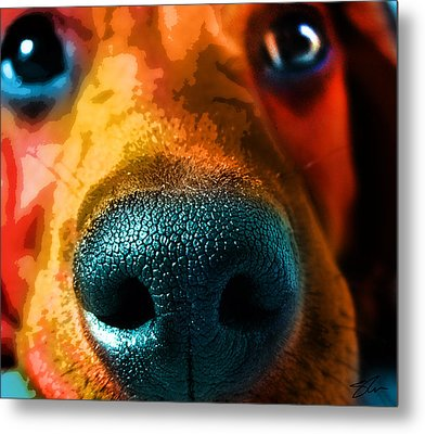 Nosy Metal Print by Shevon Johnson
