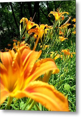 Nothing But Flowers Metal Print