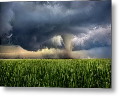 Notill Metal Print by Thomas Zimmerman