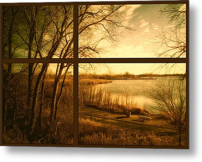 November By The Walking Path Pa Metal Print
