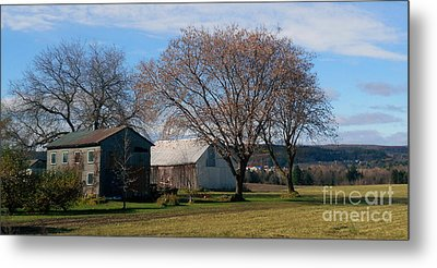 November Metal Print by Elfriede Fulda