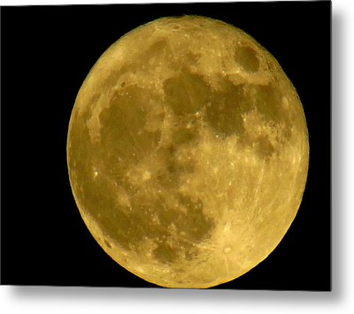 Metal Print featuring the photograph November Full Moon by Eric Switzer