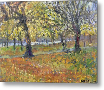 November In Hyde Park Metal Print