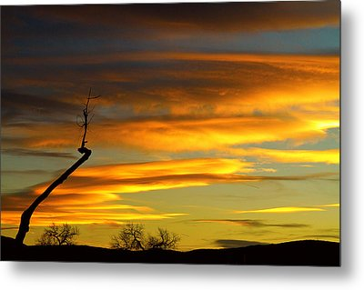 November Sunset Metal Print by James BO  Insogna