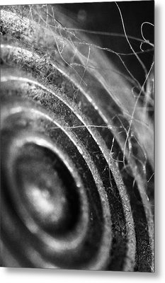 Now Hear This Metal Print by Skip Hunt