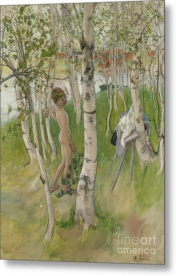 Nude Boy Among Birches Metal Print