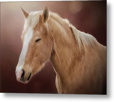 Metal Print featuring the photograph Nugget by Debby Herold