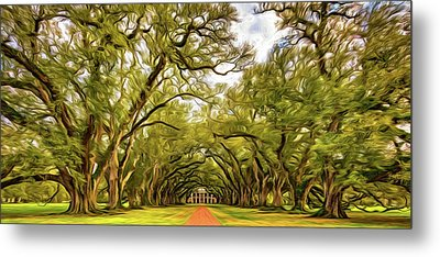 Oak Alley 6 - Paint Metal Print by Steve Harrington