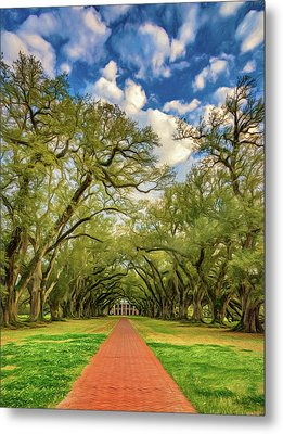 Oak Alley 7 - Paint Metal Print by Steve Harrington