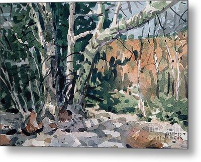 Oak Creek Canyon Metal Print by Donald Maier