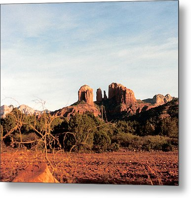 Oak Creek Canyon Metal Print by Lauri Novak