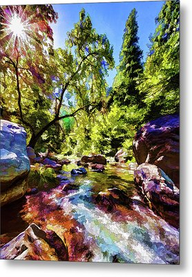 Oak Creek Sycamore Metal Print by ABeautifulSky Photography