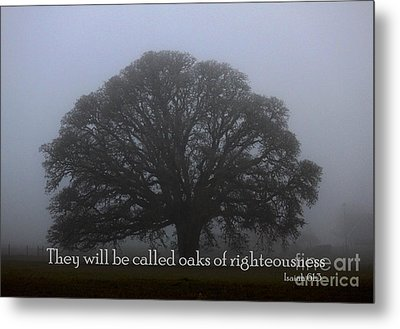 Oak Of Righteousness Metal Print by Erica Hanel