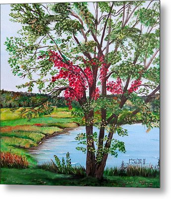Oak Tree Standing Metal Print