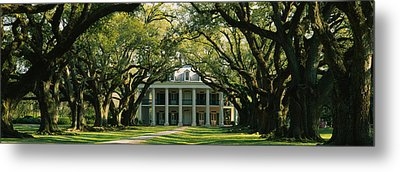 Oak Trees In Front Of A Mansion, Oak Metal Print by Panoramic Images