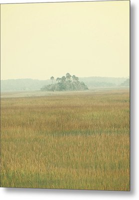 Oasis Metal Print by Amy Tyler