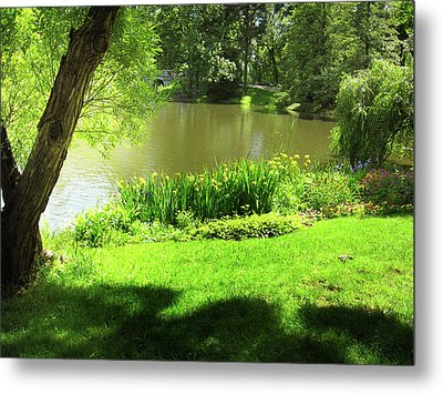 Oasis Metal Print by Mary Morawska