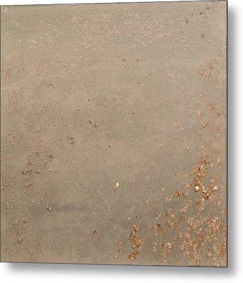 Oatmeal Metal Print by Melissa Sadoff Oren